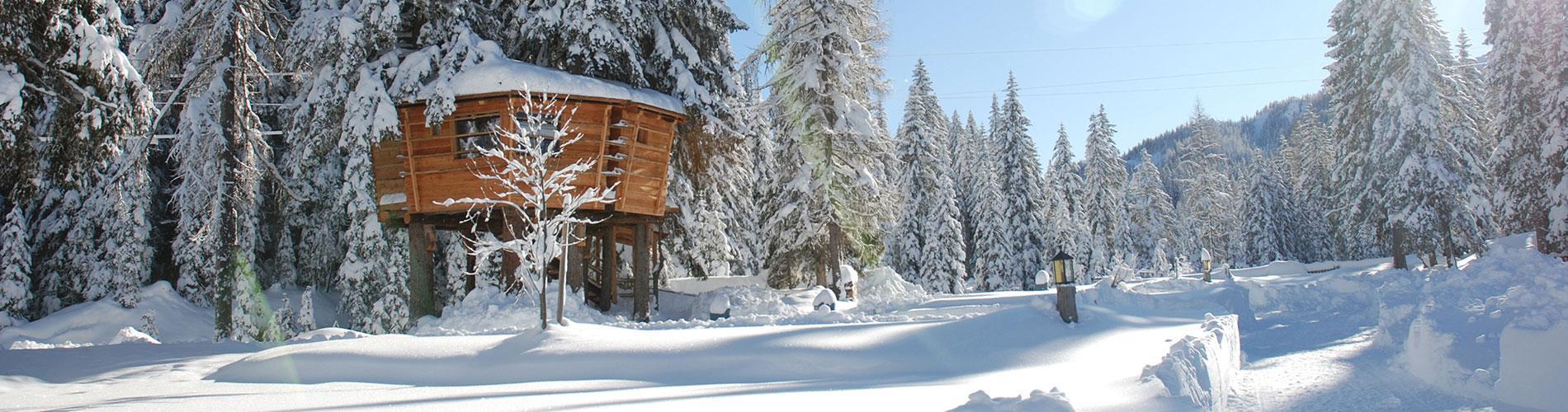 Casa Sull Albero Malga Priu Prezzi campeggio e hotel con case sull'albero in alto adige